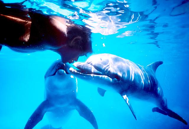 ドルフィン・マン ジャック・マイヨール、蒼く深い海へ/Dolphin Man. The Story of Jacques Mayol